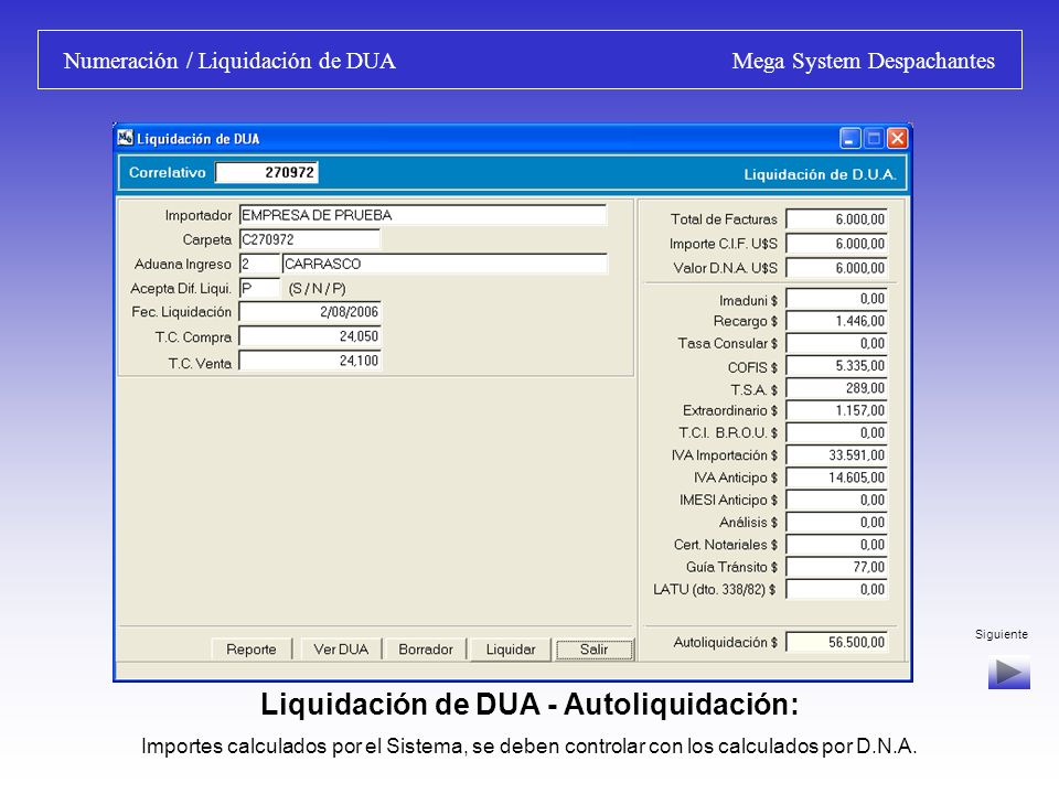 Numeración / Liquidación de DUA Mega System Despachantes