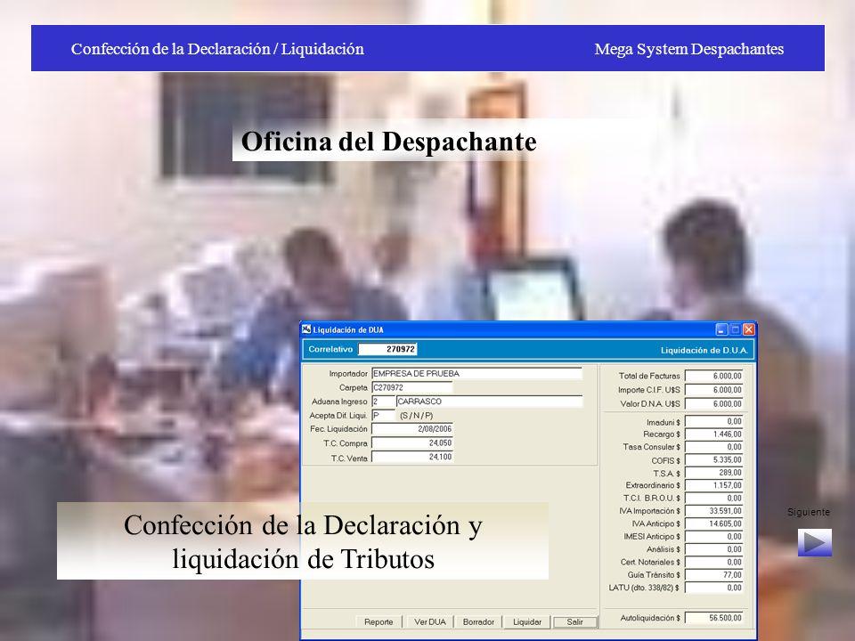 Confección de la Declaración / Liquidación Mega System Despachantes