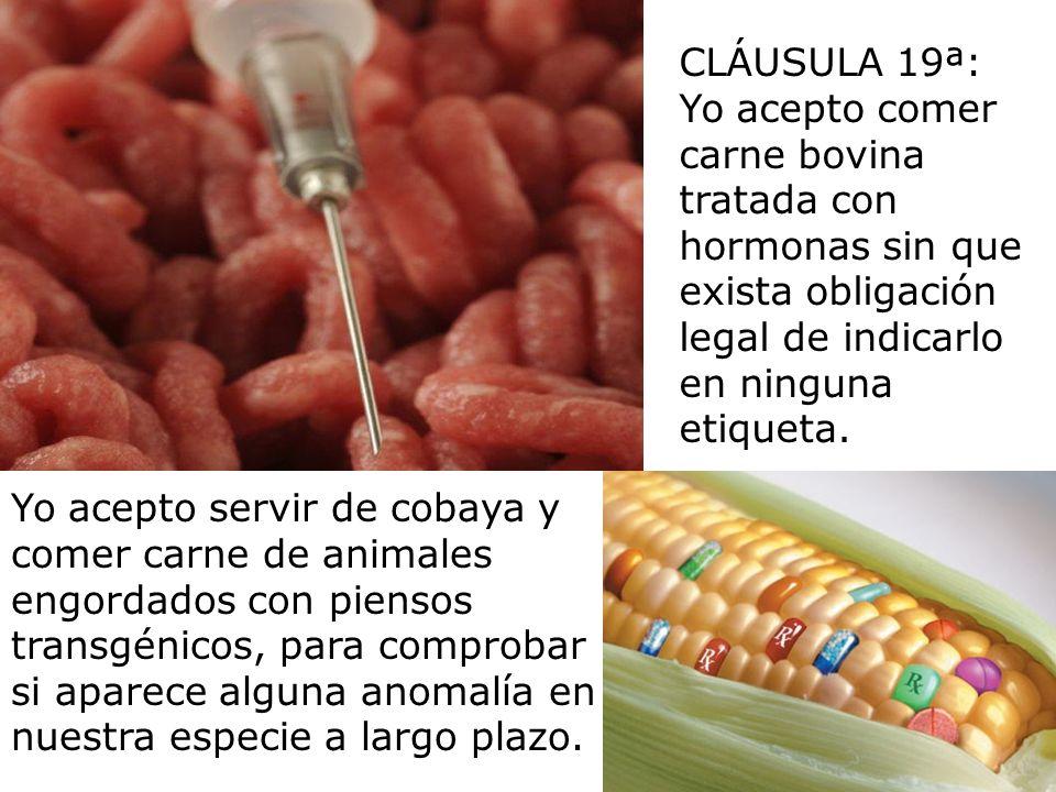 CLÁUSULA 19ª:Yo acepto comer carne bovina tratada con hormonas sin que exista obligación legal de indicarlo en ninguna etiqueta.