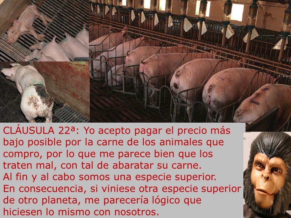 CLÁUSULA 22ª: Yo acepto pagar el precio más bajo posible por la carne de los animales que compro, por lo que me parece bien que los traten mal, con tal de abaratar su carne.