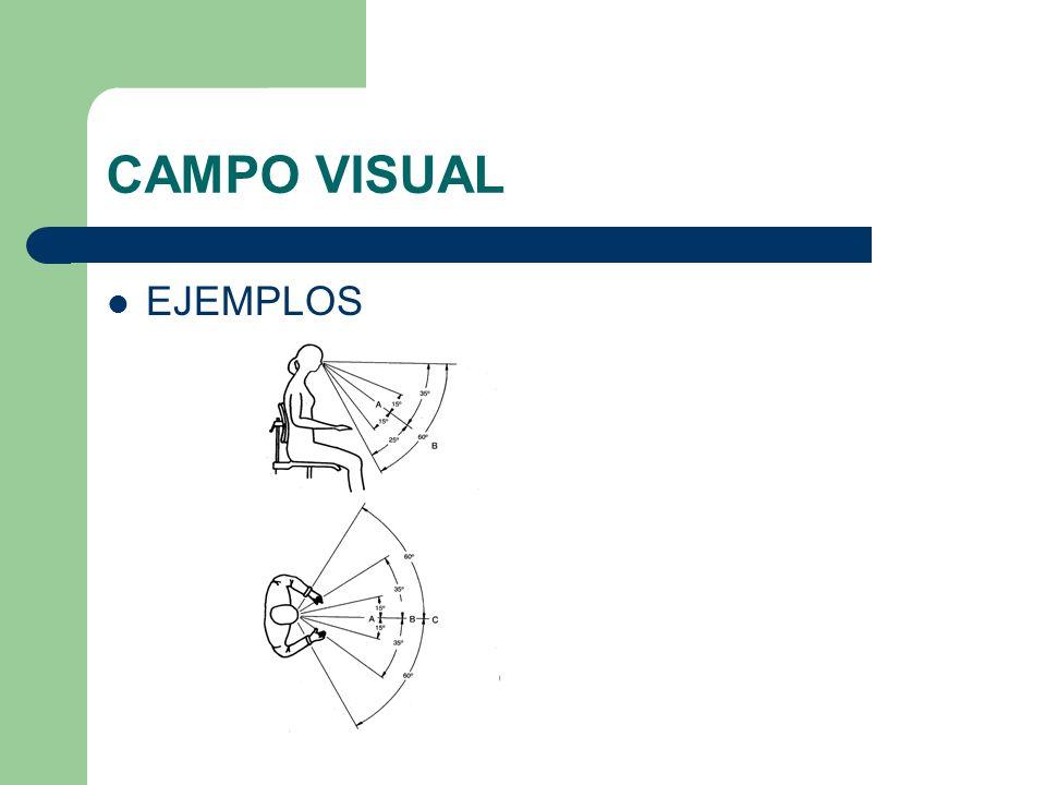 CAMPO VISUAL EJEMPLOS