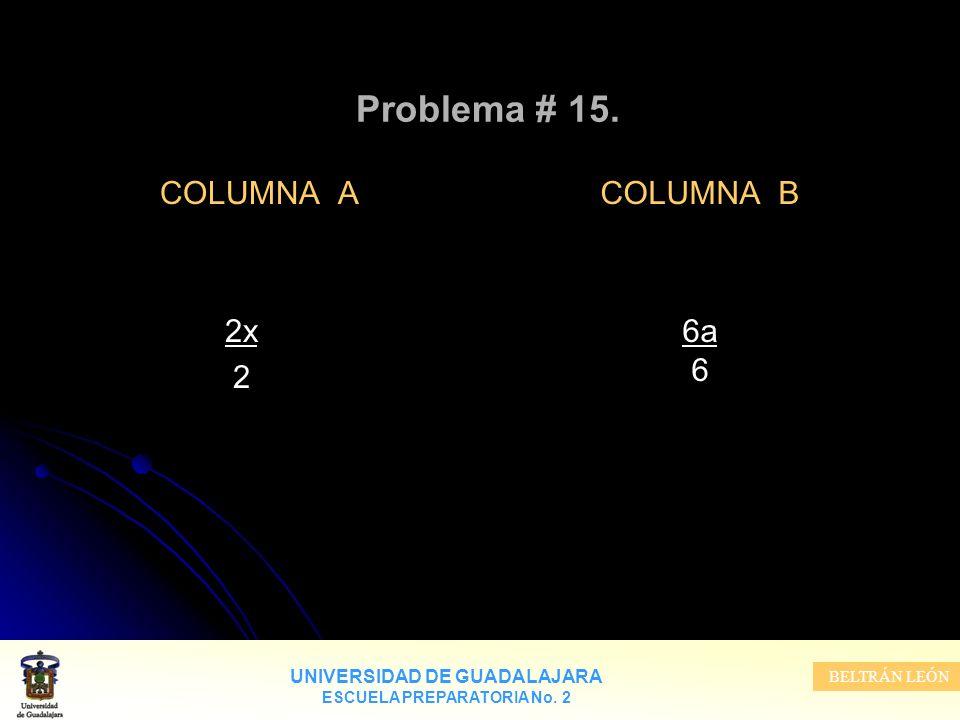 Problema # 15. COLUMNA A 2x 2 COLUMNA B 6a 6