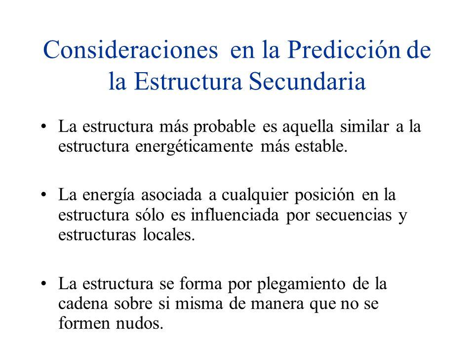 Consideraciones en la Predicción de la Estructura Secundaria