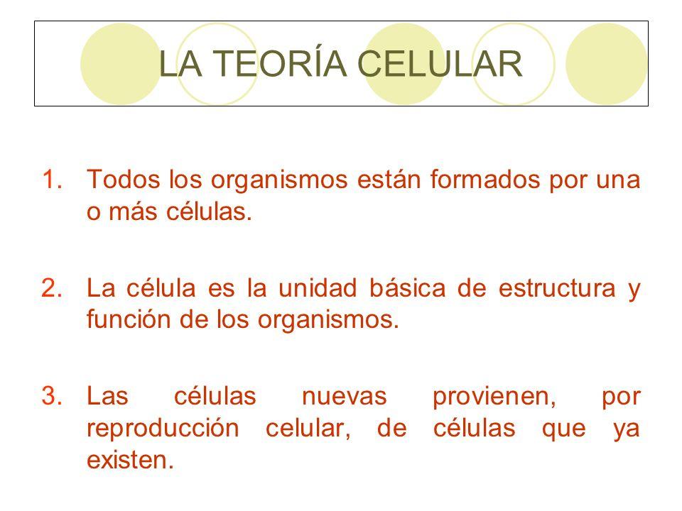 LA TEORÍA CELULAR Todos los organismos están formados por una o más células.