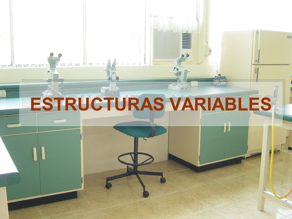 ESTRUCTURAS VARIABLES