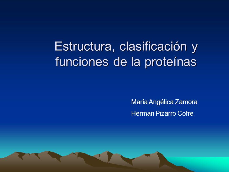 Estructura, clasificación y funciones de la proteínas