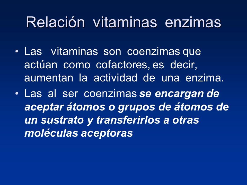 Relación vitaminas enzimas