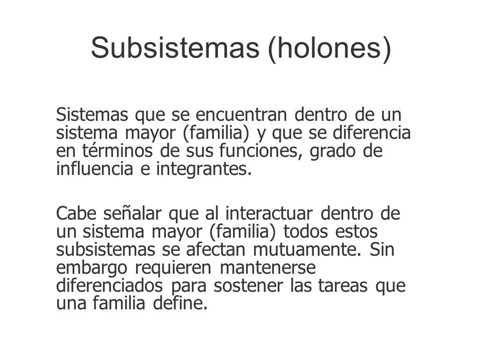 Subsistemas (holones)