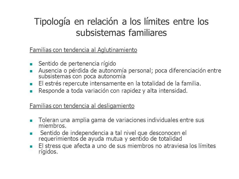 Tipología en relación a los límites entre los subsistemas familiares