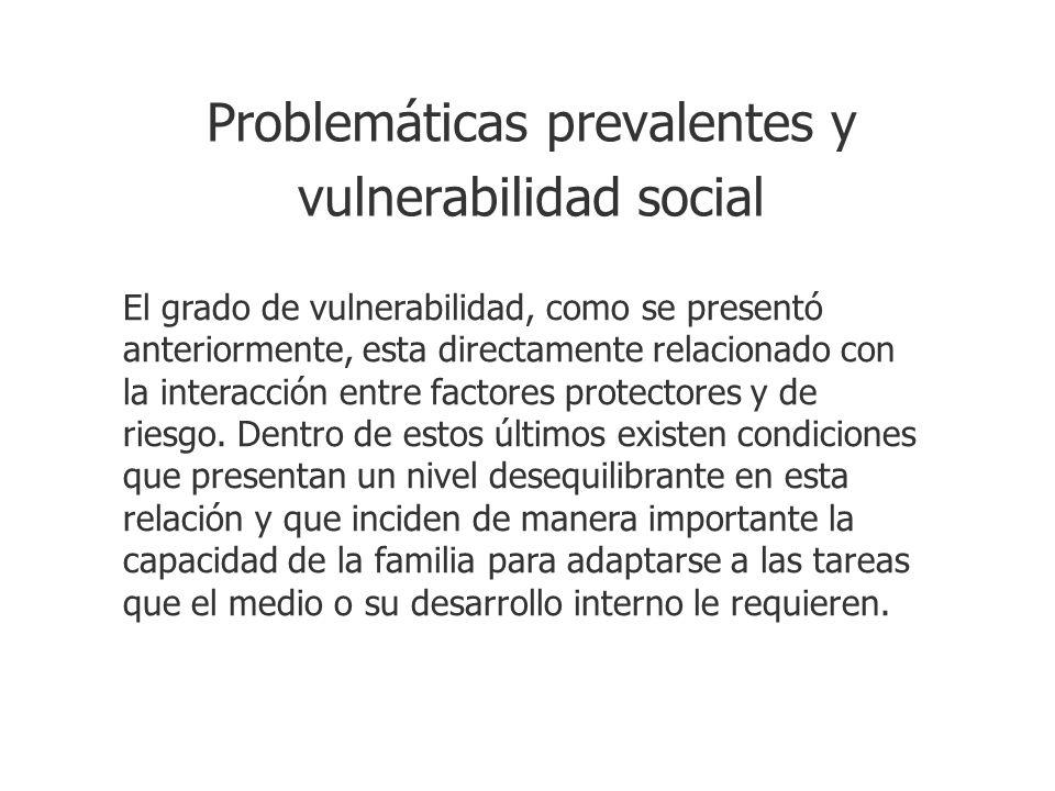 Problemáticas prevalentes y vulnerabilidad social