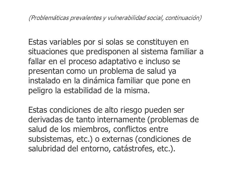 (Problemáticas prevalentes y vulnerabilidad social, continuación)