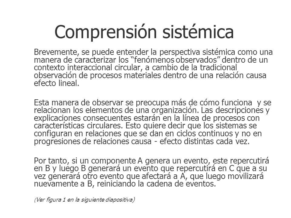Comprensión sistémica