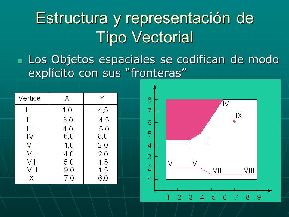 Estructura y representación de Tipo Vectorial