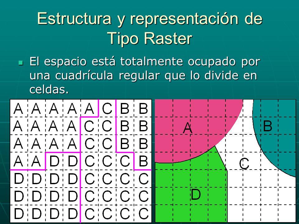 Estructura y representación de Tipo Raster