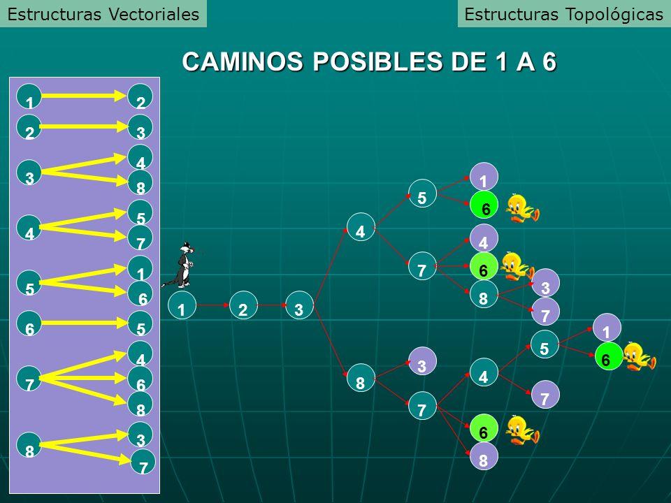 CAMINOS POSIBLES DE 1 A 6 Estructuras Vectoriales