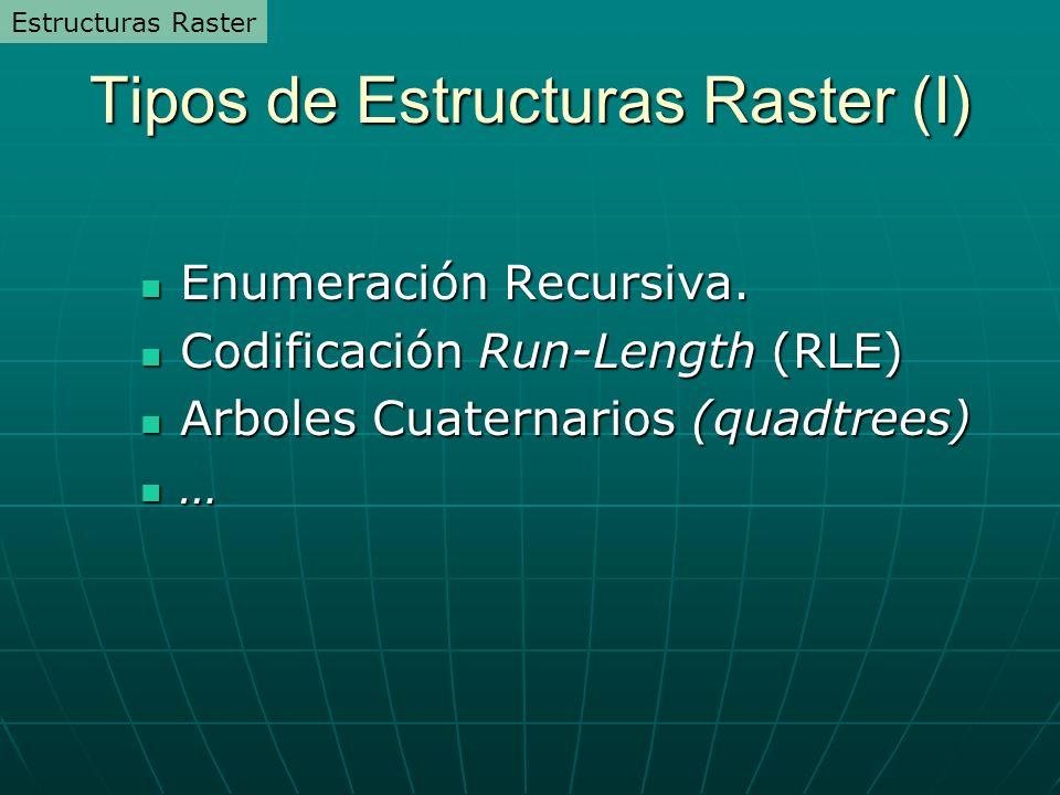 Tipos de Estructuras Raster (I)