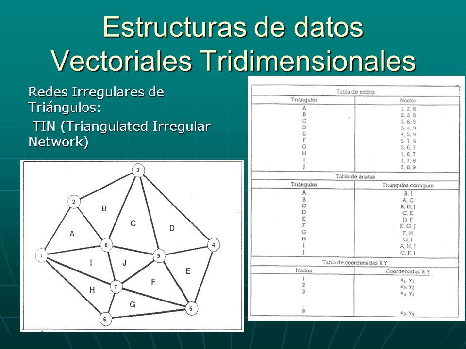 Estructuras de datos Vectoriales Tridimensionales