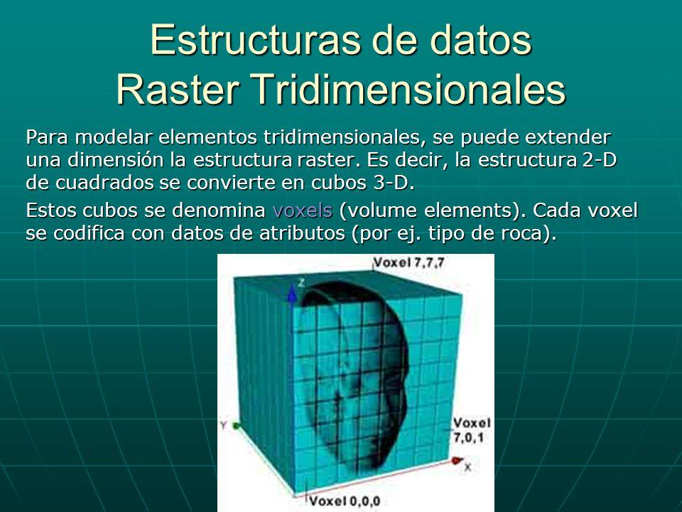 Estructuras de datos Raster Tridimensionales