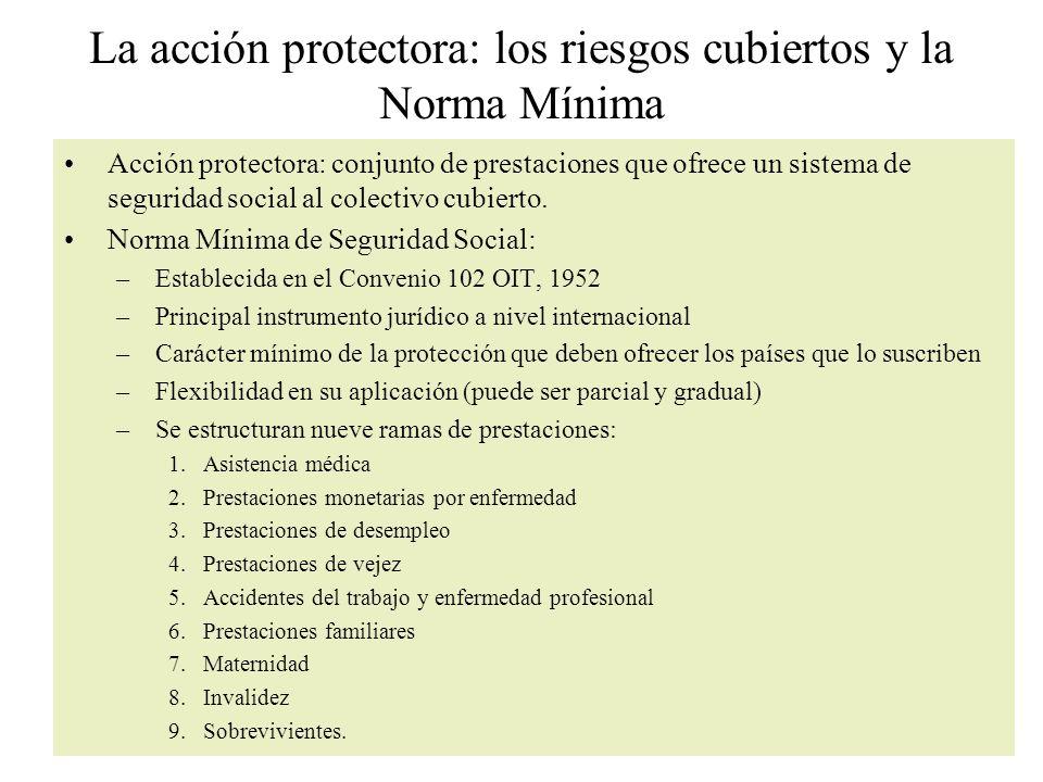 La acción protectora: los riesgos cubiertos y la Norma Mínima