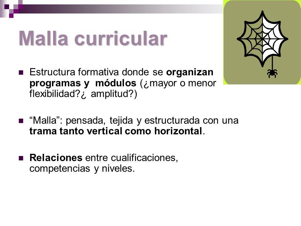 Malla curricular Estructura formativa donde se organizan programas y módulos (¿mayor o menor flexibilidad ¿ amplitud )