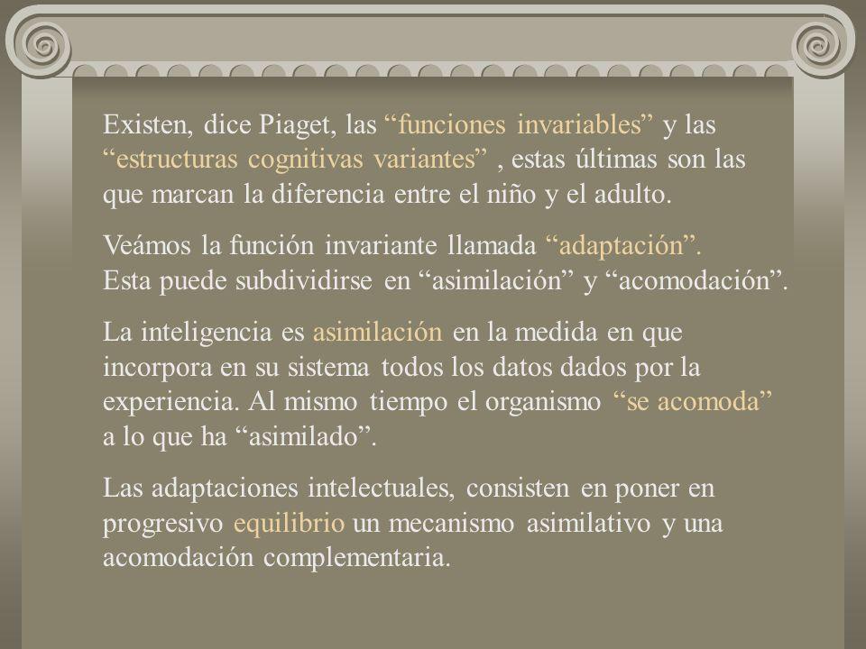 Existen, dice Piaget, las funciones invariables y las estructuras cognitivas variantes , estas últimas son las que marcan la diferencia entre el niño y el adulto.