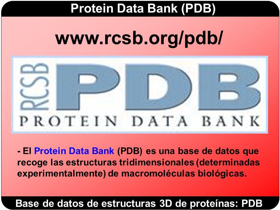 www.rcsb.org/pdb/ Base de datos de estructuras 3D de proteínas: PDB