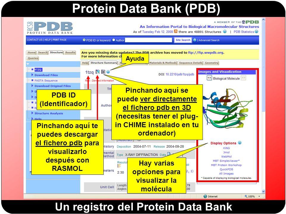 PDB ID (Identificador) Hay varias opciones para visualizar la molécula