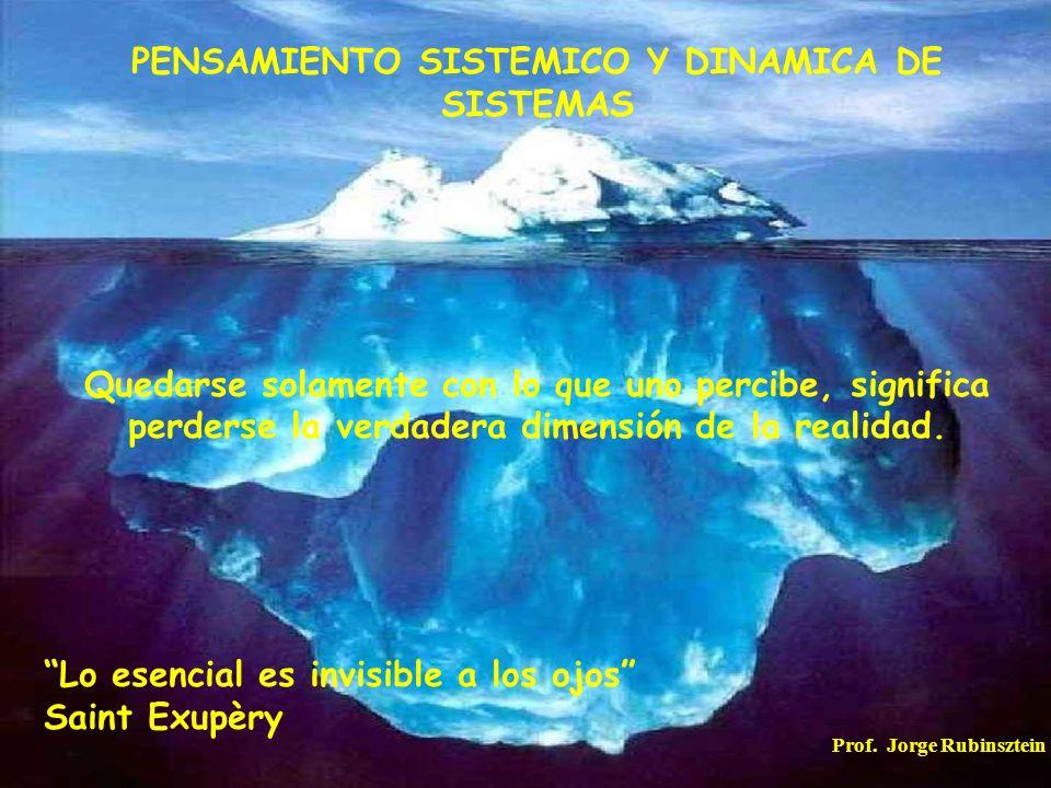PENSAMIENTO SISTEMICO Y DINAMICA DE SISTEMAS
