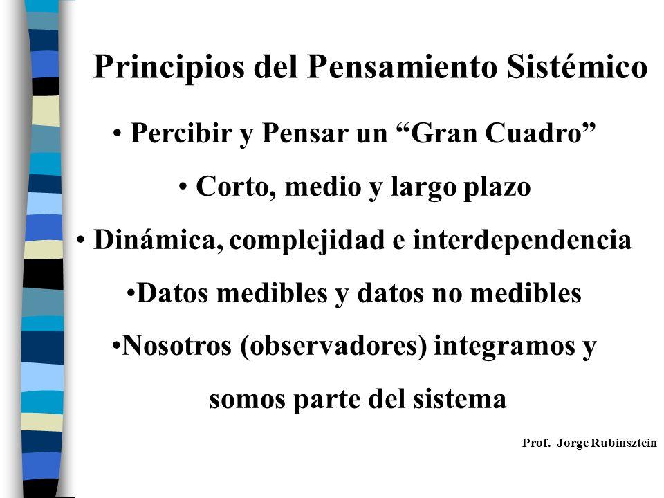 Principios del Pensamiento Sistémico