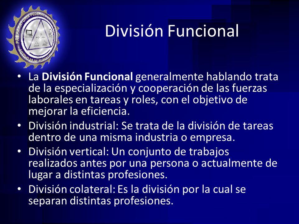 División Funcional