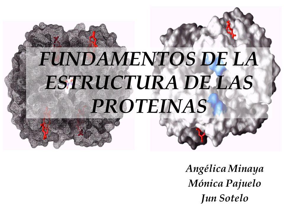 FUNDAMENTOS DE LA ESTRUCTURA DE LAS PROTEINAS