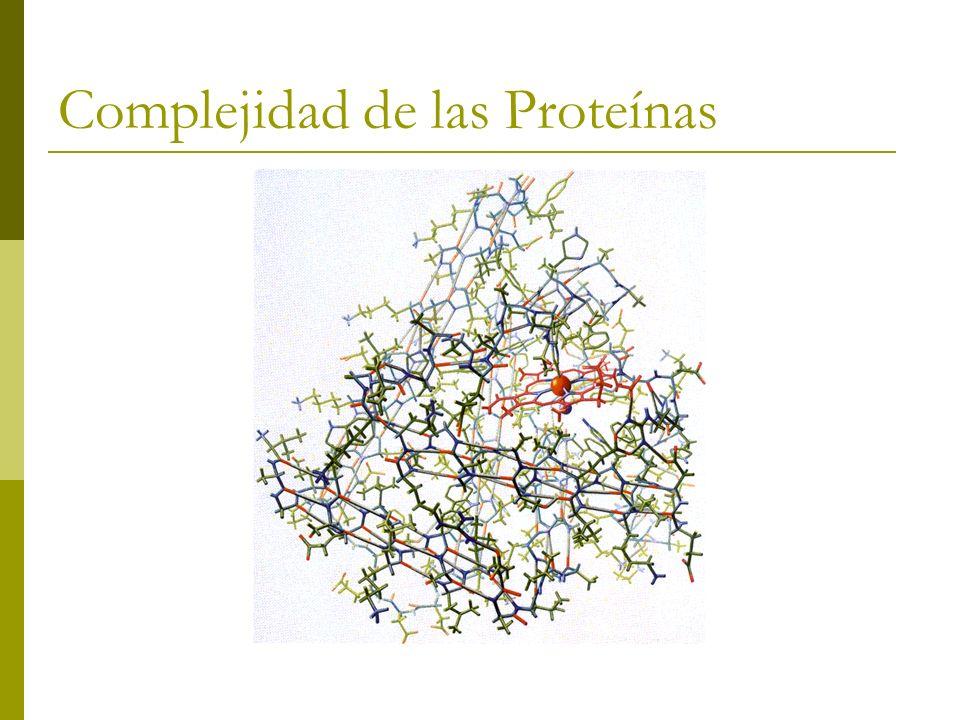 Complejidad de las Proteínas