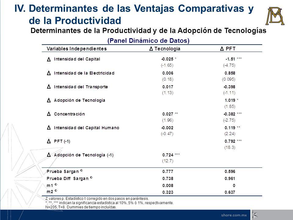 IV. Determinantes de las Ventajas Comparativas y de la Productividad