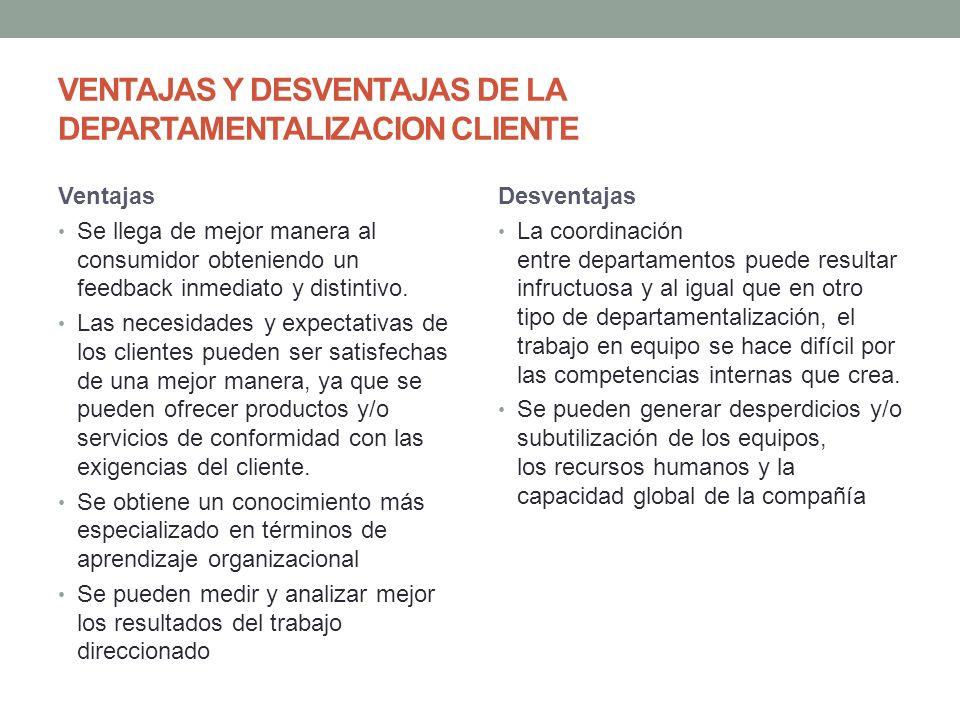 VENTAJAS Y DESVENTAJAS DE LA DEPARTAMENTALIZACION CLIENTE