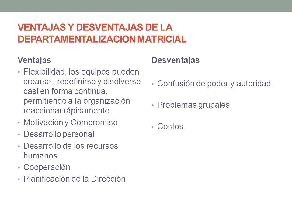 VENTAJAS Y DESVENTAJAS DE LA DEPARTAMENTALIZACION MATRICIAL