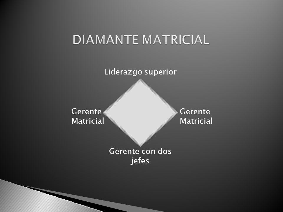 DIAMANTE MATRICIAL Liderazgo superior Gerente Matricial