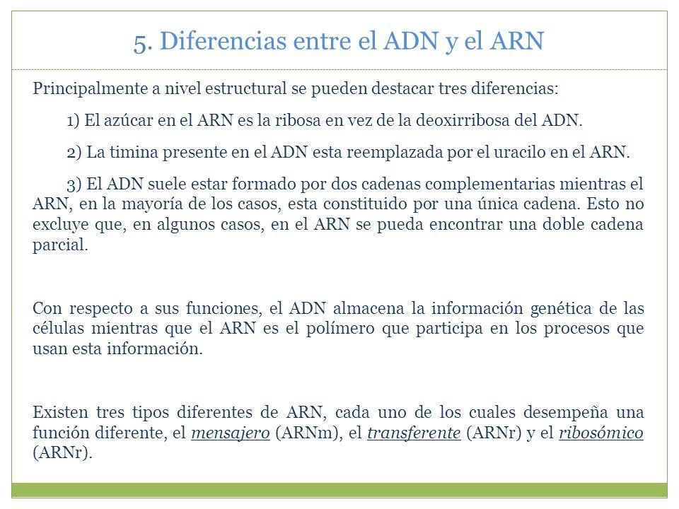 5. Diferencias entre el ADN y el ARN