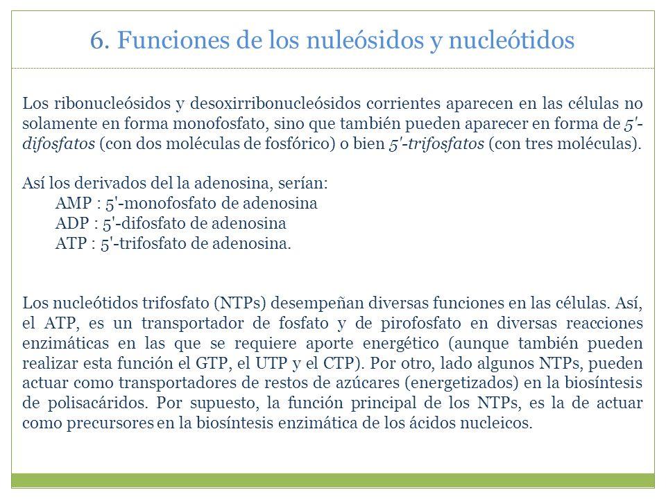 6. Funciones de los nuleósidos y nucleótidos