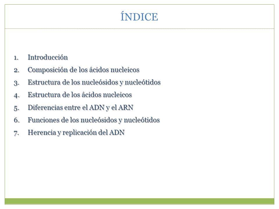 ÍNDICE Introducción Composición de los ácidos nucleicos