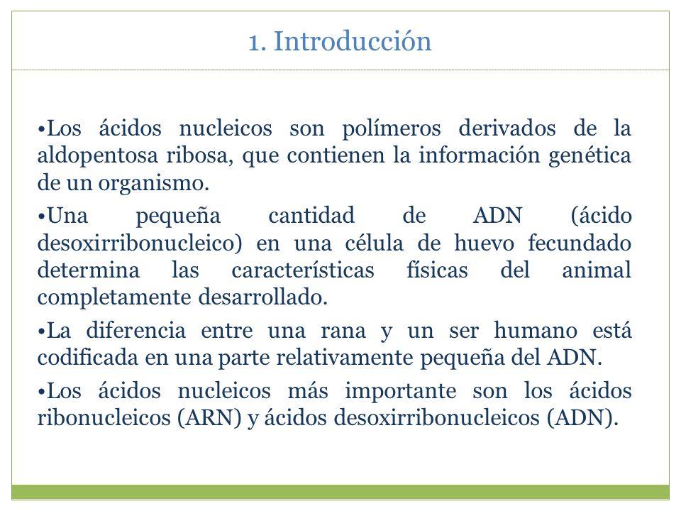 1. Introducción Los ácidos nucleicos son polímeros derivados de la aldopentosa ribosa, que contienen la información genética de un organismo.