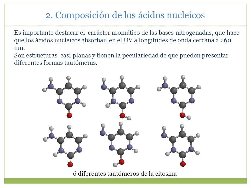 2. Composición de los ácidos nucleicos