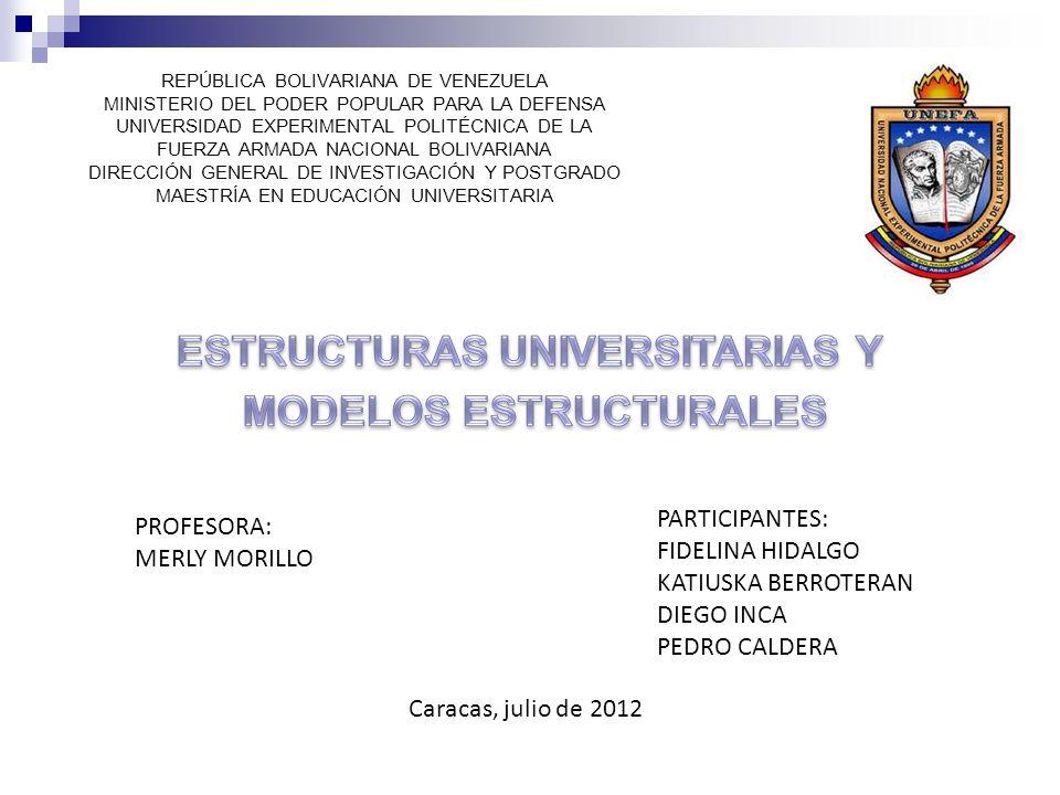 ESTRUCTURAS UNIVERSITARIAS Y MODELOS ESTRUCTURALES