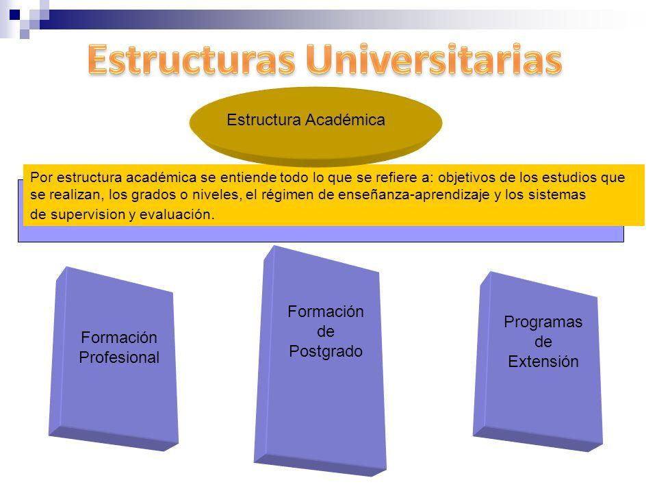 Formación de Postgrado Programas de Extensión Formación Profesional
