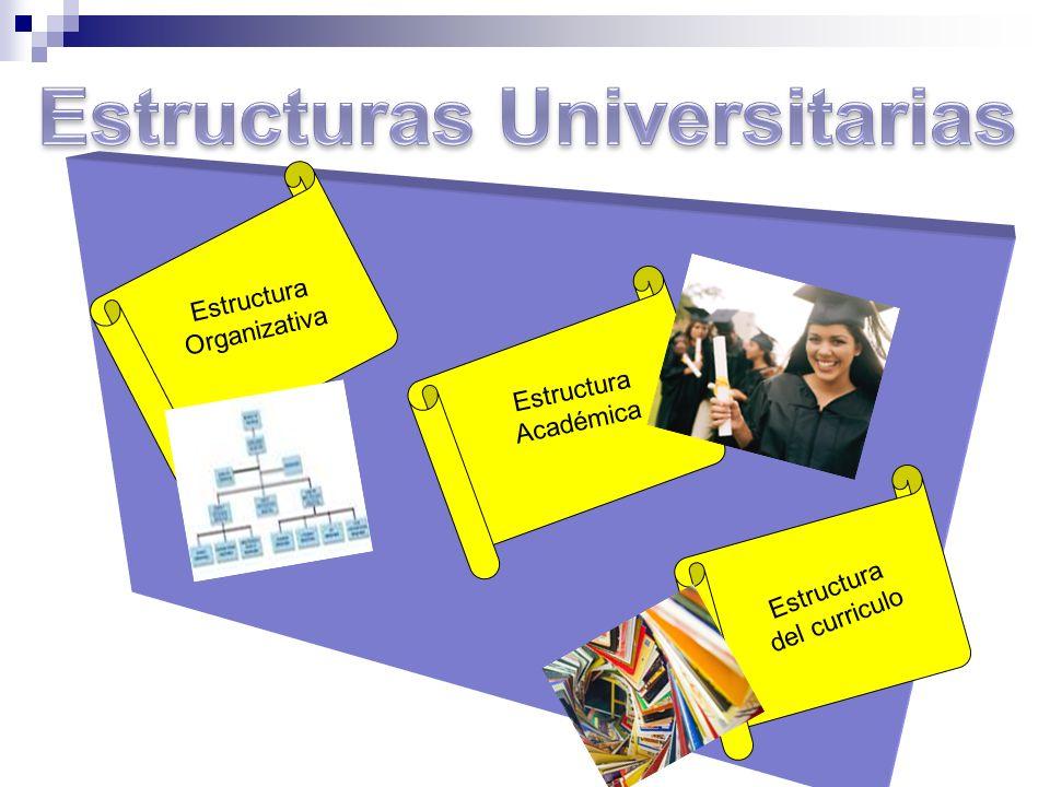Estructuras Universitarias