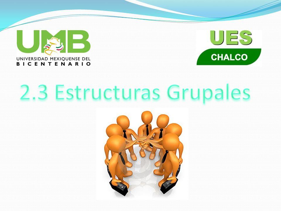 2.3 Estructuras Grupales