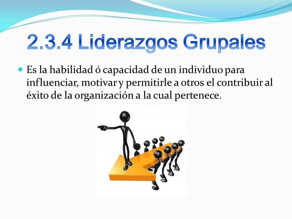 2.3.4 Liderazgos Grupales