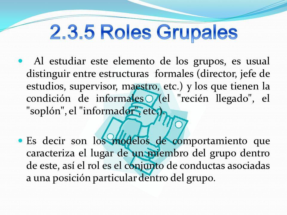 2.3.5 Roles Grupales