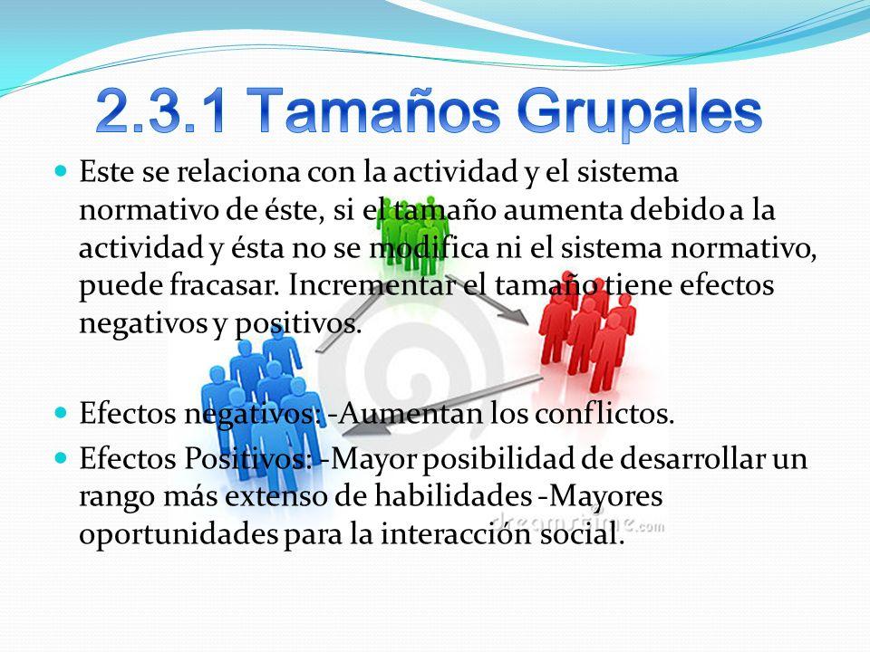 2.3.1 Tamaños Grupales