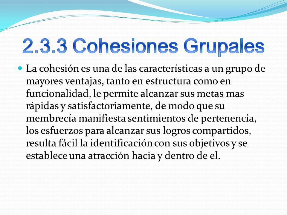 2.3.3 Cohesiones Grupales
