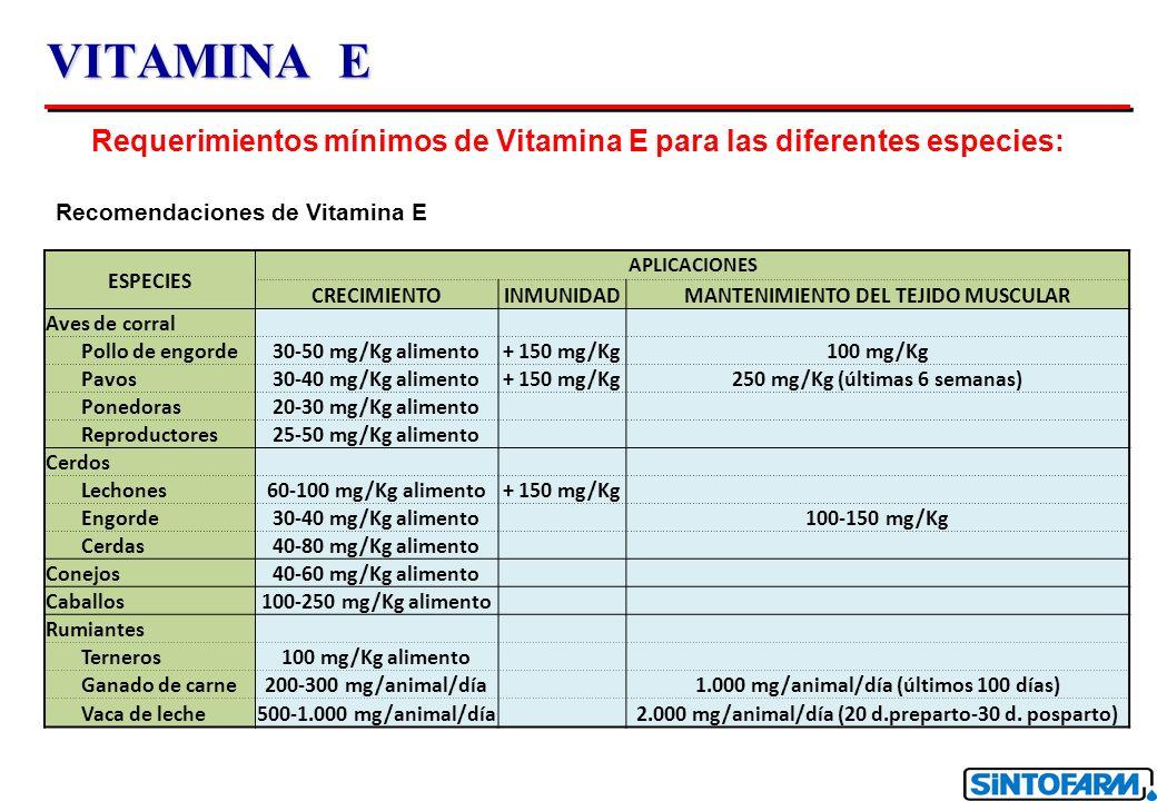 VITAMINA E Requerimientos mínimos de Vitamina E para las diferentes especies: Recomendaciones de Vitamina E.